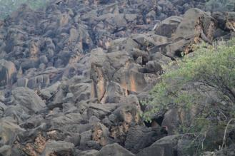 Angola Cave-Chats, Zebra Mountains