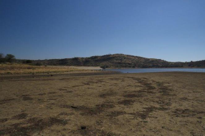 Avis Dam