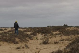 Looking out for the Dune Lark.