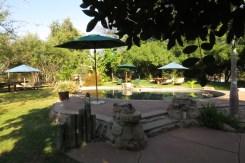 Pool area, Nunda