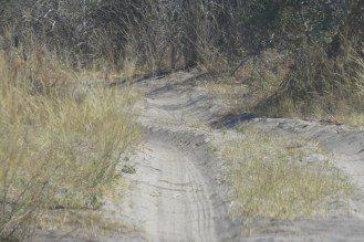Typical sandy tracks in and around the Nambwa area.