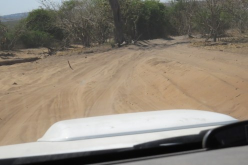 Thick Sand - main road in Chobe NP.