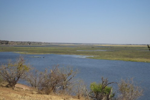 View of the floodplain from inside Chobe NP.