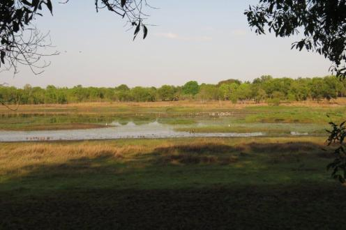McMinn's Lagoon