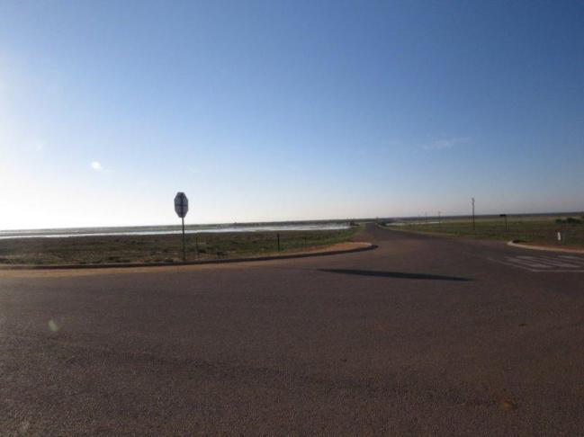 Roadside birding