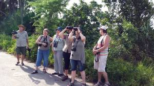 BLPN birders -Mtunzini