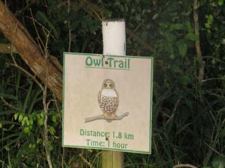 Owl Trail