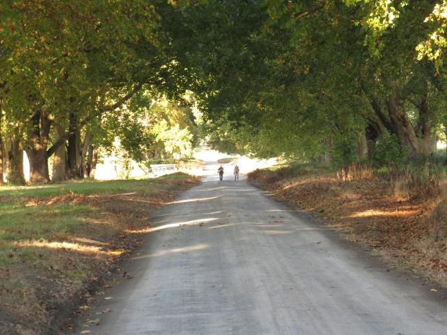 Walk to Karkloof Conservancy bird hides