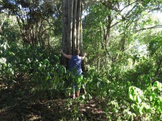 Sandi loves her tree