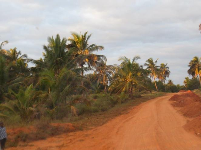 The sandy road to Morrungulo Bay Lodge