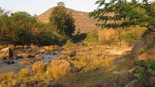 Mooi River