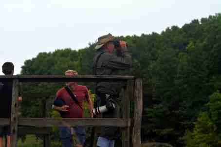 Birding from the Platform - Decklan Jordaan