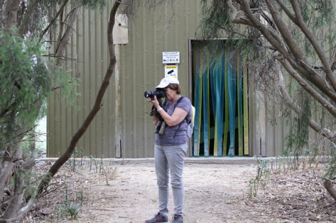 Sally in front of the double storey bird hide