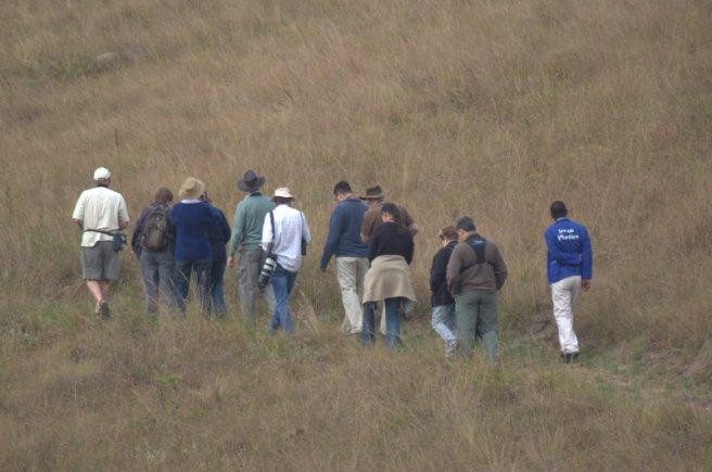 Birders in the grassland