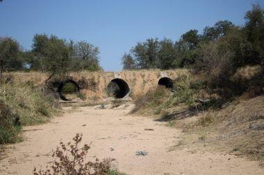 What the bridge should look like