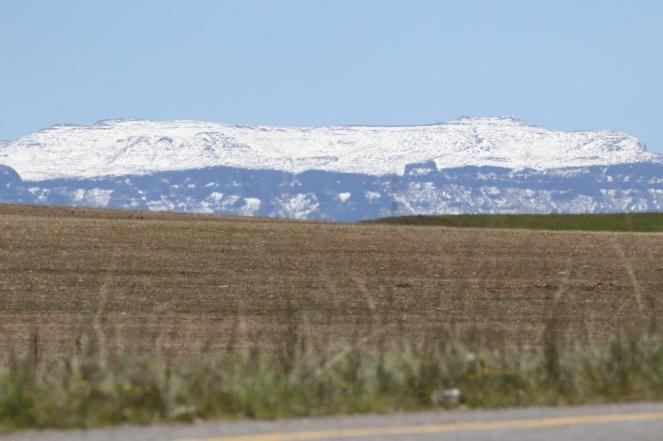 Snow on the Berg