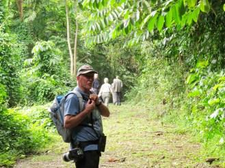 Bush Birding around GC