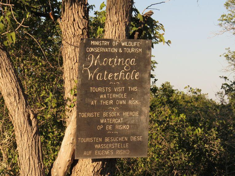 Moringa sign to the waterhole viewing site