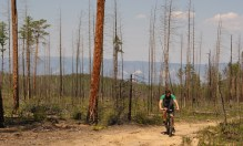Biking through charred landscapes. Russia has a problem with forest fires.