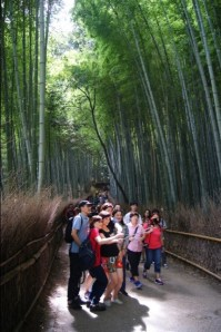 The Arashiyama bamboo grove is veeery popular.