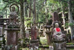 Koya-san's top attraction: The cemetary surrounding the temple Oku-no-in.