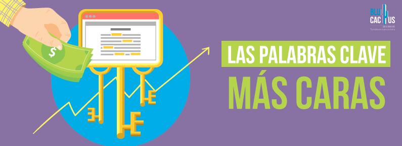BluCactus Las palabras clave más caras Google Adwords En Mexico cuanto cuesta