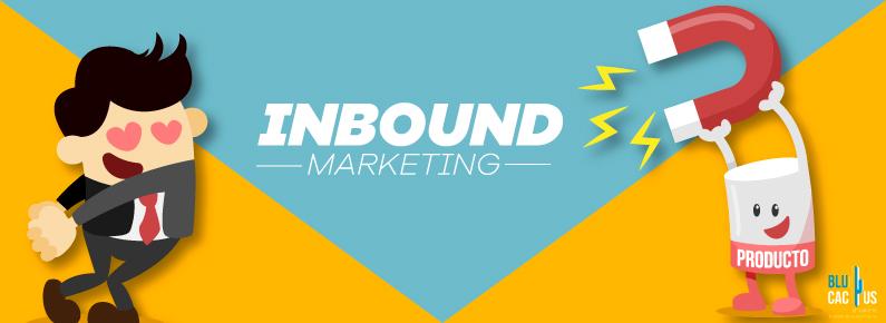 BluCactus inbound marketing que es y como usarlo en mi negocio