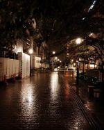 ある日の雨の夜