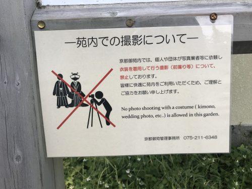 נימוסים יפנים - תיירים