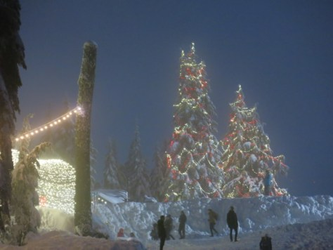 Peak of Christmas at Grouse Mtn 026