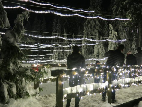 Peak of Christmas at Grouse Mtn 035
