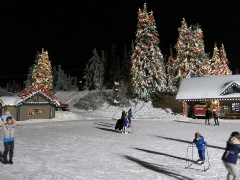 Peak of Christmas at Grouse Mtn 054