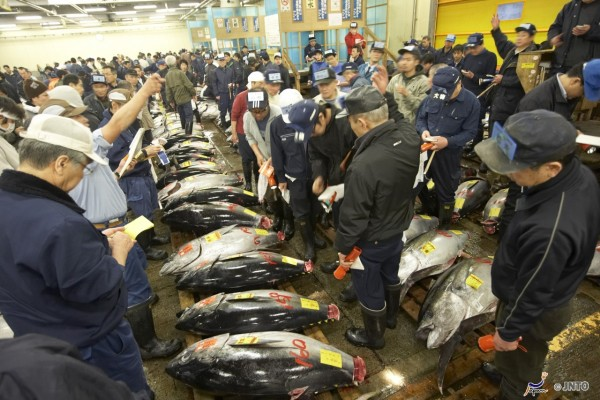 Tsukiji Market is the biggest fish market in Japan. ©JNTO