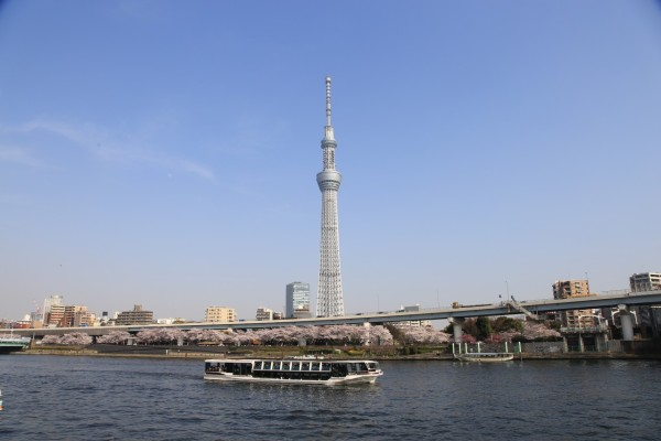The view of Tokyo Skytree from near Asakusa. It is new icon of Tokyo. (C) Yasufumi Nishi / JNTO