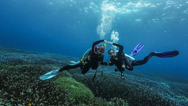 Bali Hingga Morotai 10 Lokasi Diving Unggulan Di Indonesia Kumparan Com