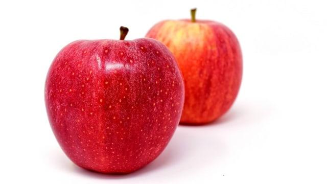Hasil gambar untuk apel segar