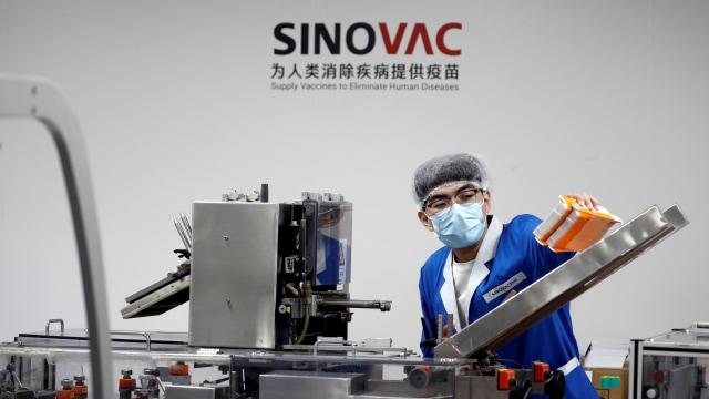 MUI Sebut Vaksin Sinovac Halal, Izin Darurat BPOM Segera Terbit