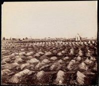 October 2020 L: Soldier's Cemetery, City Point, Virginia: Outdoor scene. Rows of fresh unmarked graves in foreground. Graves with wooden 'headstone' markers in background. Fence, tents and structures beyond grave yard. Man in uniform standing at right background of image next to tent.