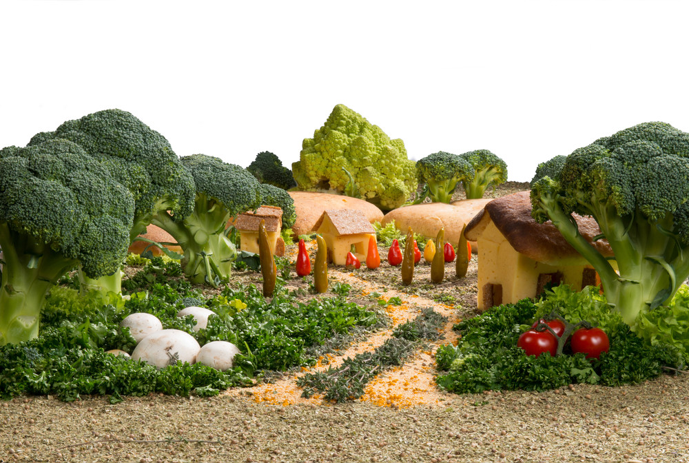 Five Tips For Planting Your First Eco-Friendly Vegetable