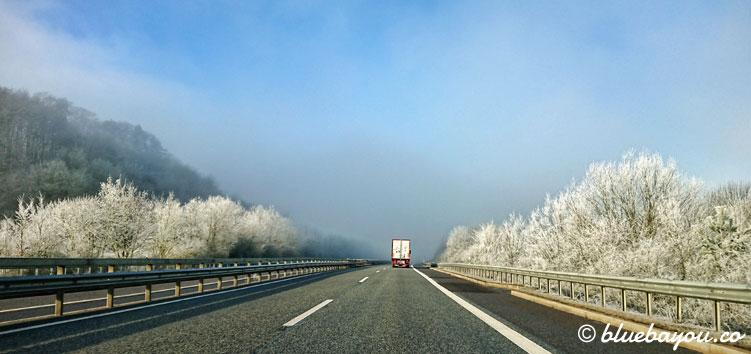 Fotoparade: Vereiste Bäume in der Sonne entlang der Autobahn.