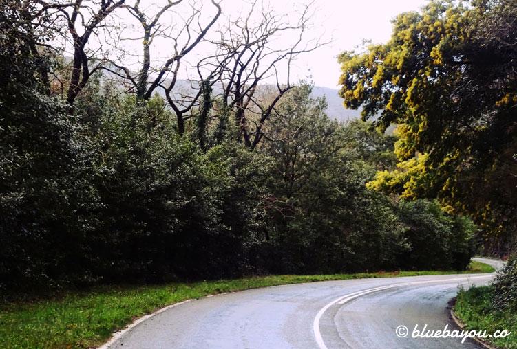 Landstraße entlang des Camino del Norte.