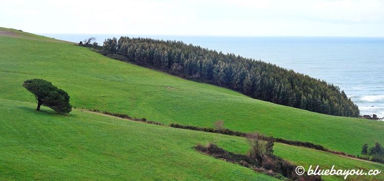 Wunderschöne Natur entlang des Camino del Norte.