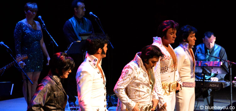 Die Top 5 Finalisten des Ultimative Elvis Tribute Artist Contest 2015.