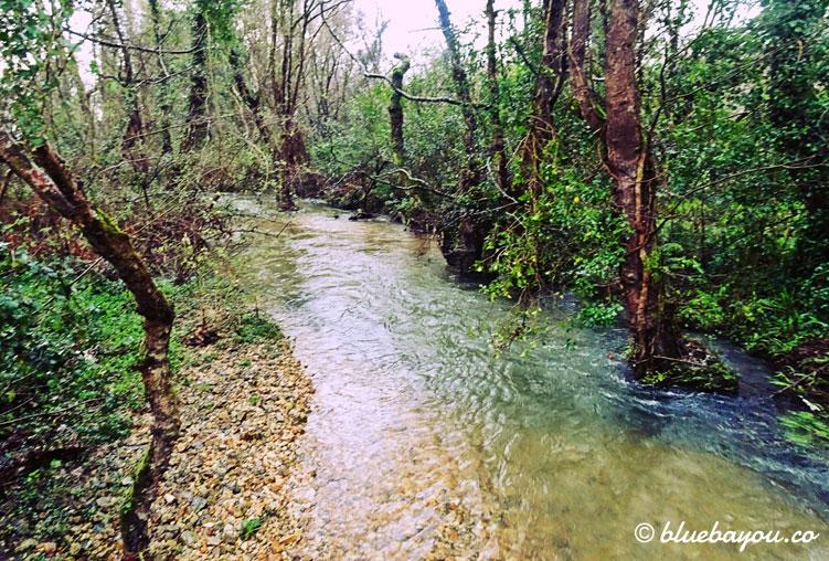 Der Rio Barayo ist so überflutet, dass er den Wanderweg zu einer Sumpflandschaft wandelt.