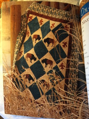 Quilting the Great Outdoors Book -sample quilt