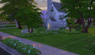 Daisy Cottage 2