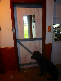 This is the door looking into Mom's entry, where I needed light coming in and luckily found this original-to-the-farm barn door in THE BARN.
