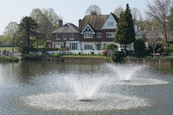 Lindfield Village Pond