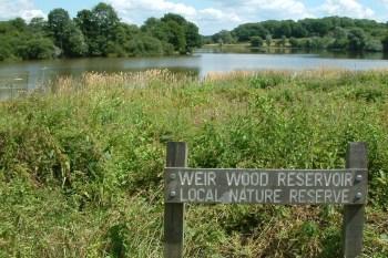 Weirwood Reservoir