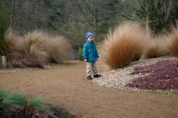 In Saville gardens
